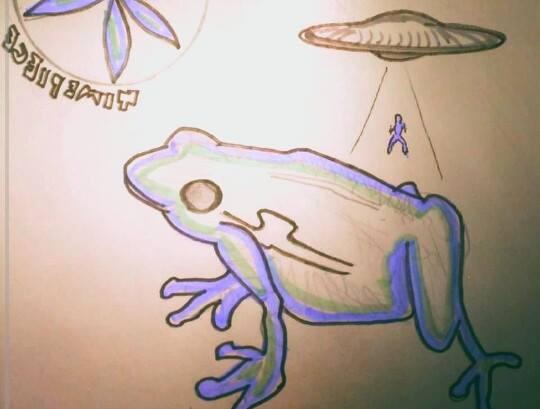 """Orion frog"""